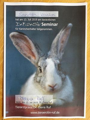 Intensivseminar für Kaninchenhalter