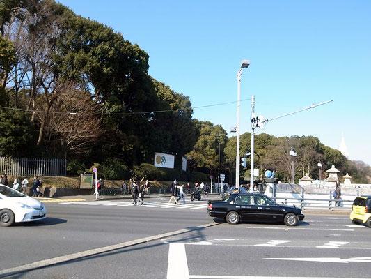 前方には緑に囲まれた明治神宮。