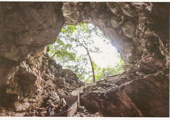 Cuevas de Borra