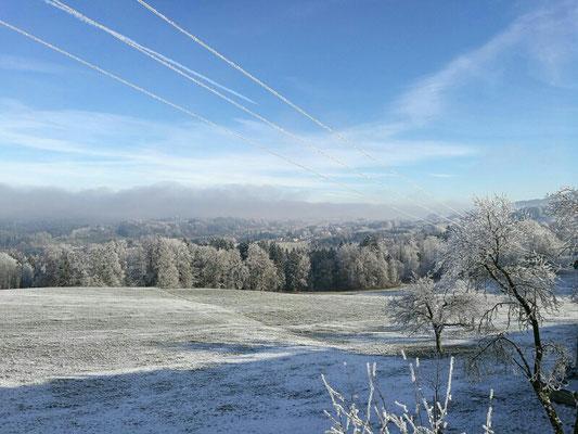 Winterlandschaft 2016