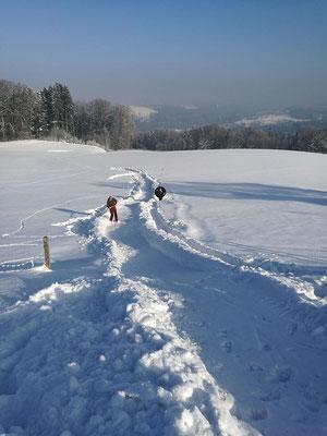 """""""Reifen-Rutschbahn"""" Winter 2016/2017"""