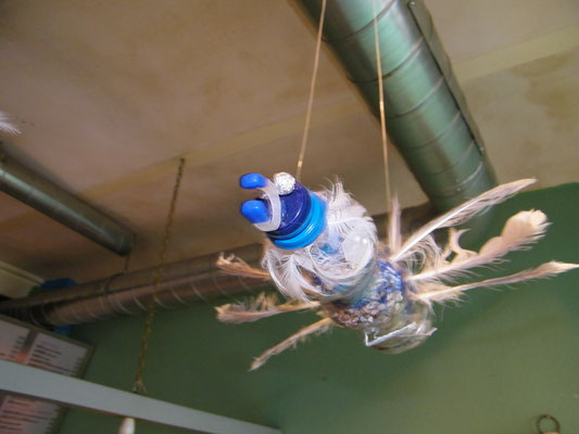 Bird, Birds eye, COUP, Upcycling by Moussa Ba, Popenguine, Senegal and ,by NiA, #COUP, Performance by T.P.Pain, cargobar, Basel