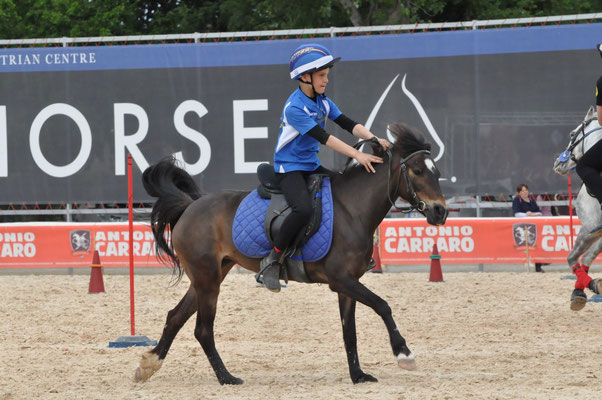 Pony Master Show 2019 Circolo Ippico La Pirella Fabriano