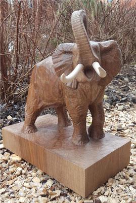 Elefant - Aaron Plüss