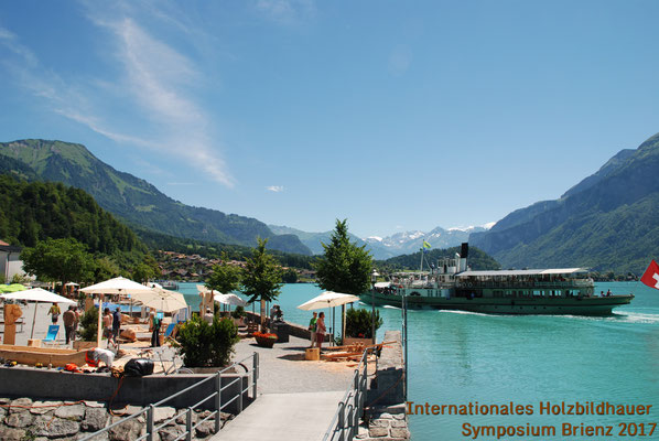 The Symposium takes place at the beautifule lakeside of lake Brienz