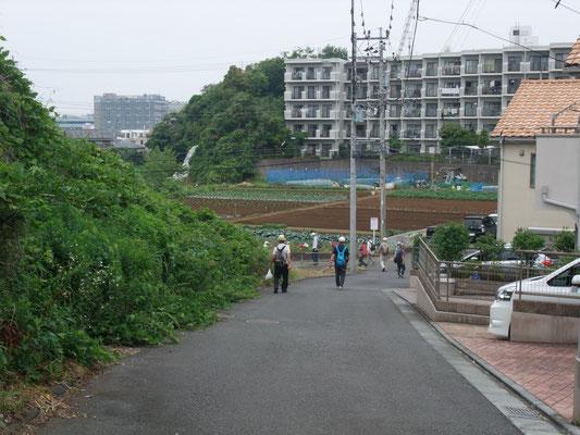 農道を辿り東レ基礎研究所を右に見て左に折れる