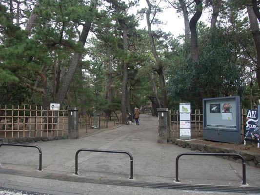 緑地入り口、美術館もあります