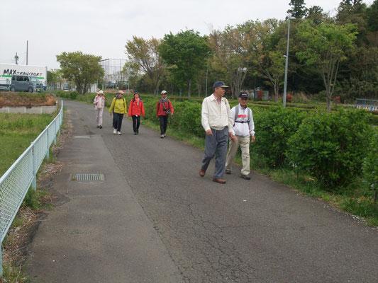 次に小出川沿いに歩く、5月には紫陽花が、秋には彼岸花祭りが
