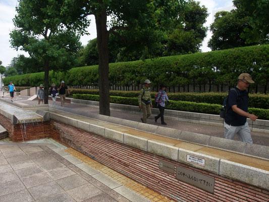 神奈川歯科大前のペーブメントを歩く