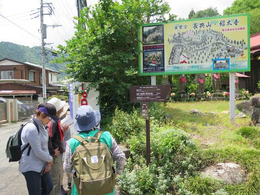 枝垂れ桜で有名な長興山紹太寺の参道前