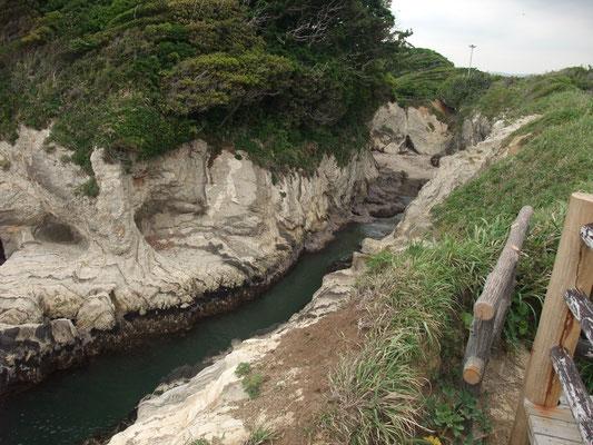 城山展望台からどんどんびきの入り江を見る
