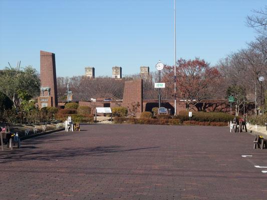 公苑の奥に見える競馬場跡地の観覧席タワー