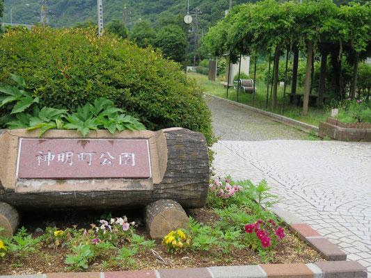 神明町公園にてお弁当