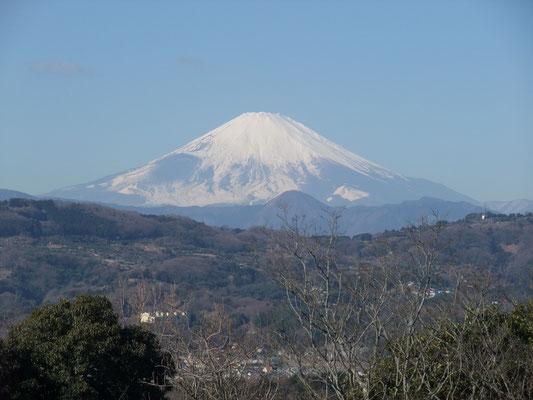 鮮やかに霊峰富士が見られた