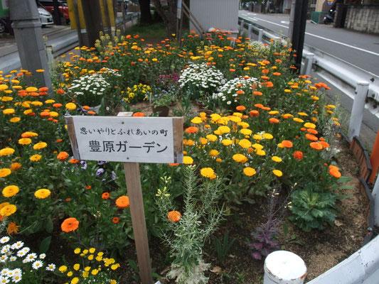 豊原町会館辺りの複雑な交差点を北に分け、富士見公園で小休止
