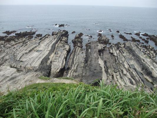 眼下の荒崎海岸・・・白い頁岩と凝灰岩の層の海蝕海岸