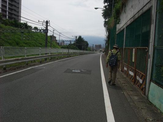 左に相鉄線、正面に大山、先の踏切を渡る
