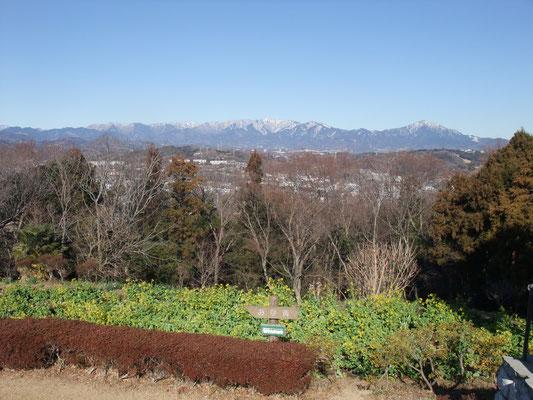 北には雪を頂いた丹沢連峰