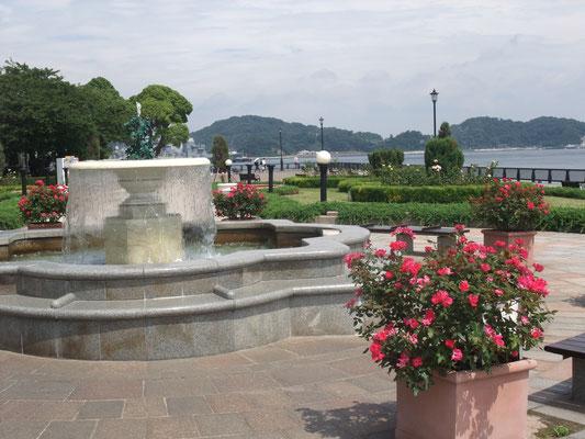 公園はフランス式庭園形式、バラの花が2000株とか