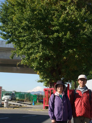 大山道相模川戸田の渡し、圏央道の先に富士山を望む