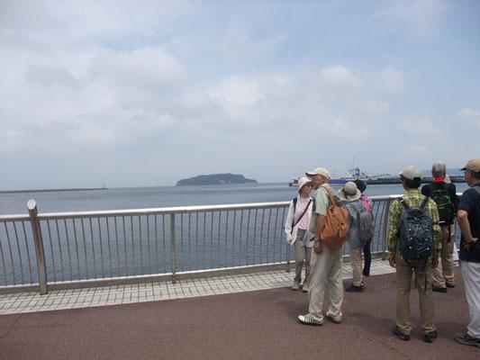 猿島が見えます