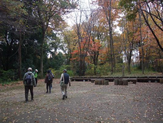 森の学校の広場