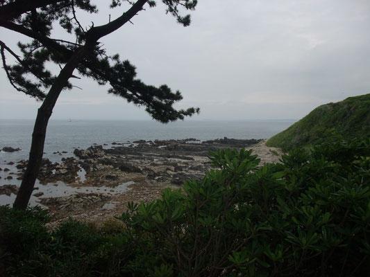西側の海岸