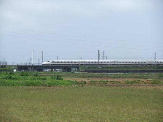 上りの新幹線を遠望。島橋でバス道にでる。