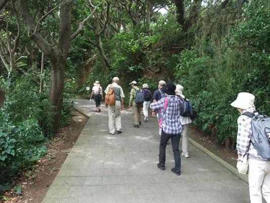 史跡ツアーは時間待ちの為、参加せずに散策開始