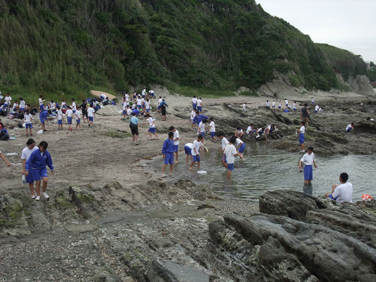 入り江に茅ヶ崎の中学生の集団が磯遊び