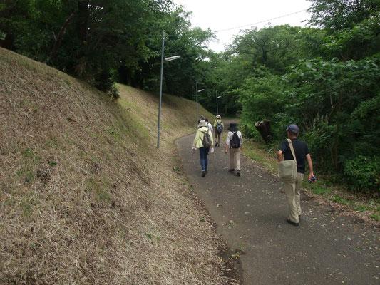 秋葉山古墳群到着、海老名市で一番高い丘(約85メーター)