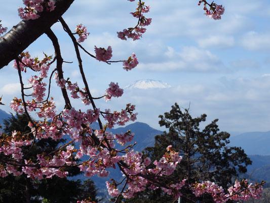 よく見ると富士山の頂上が…