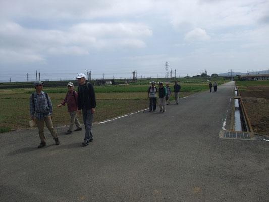 後方に新幹線。一面の水田地帯
