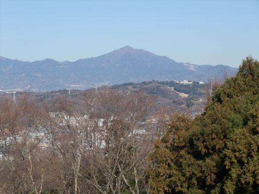 丹沢大山も間近に