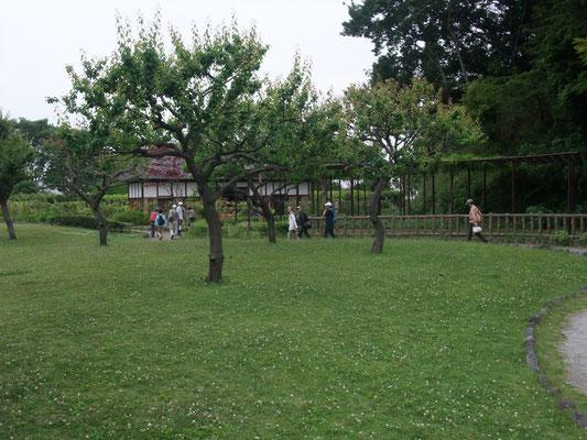古民家を出て、奥田公園、藤沢駅へと
