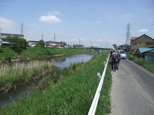 北進し渋田川に出る