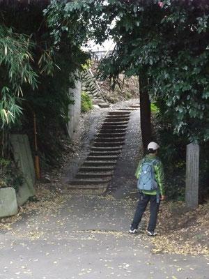前に階段出現