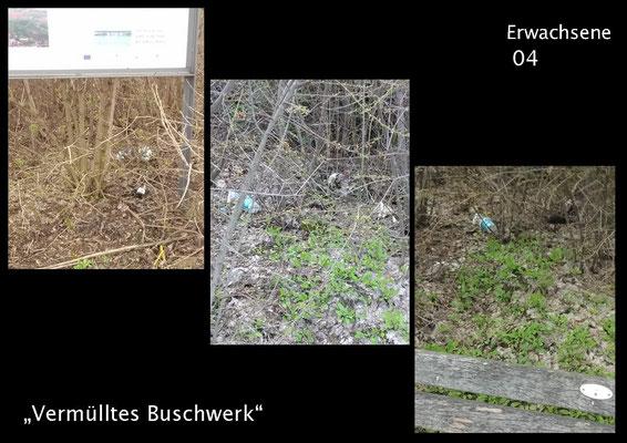 """E 4 Titel: """"Vermülltes Buschwerk"""""""