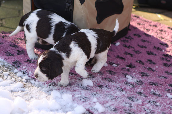 erster Tag im Schnee...
