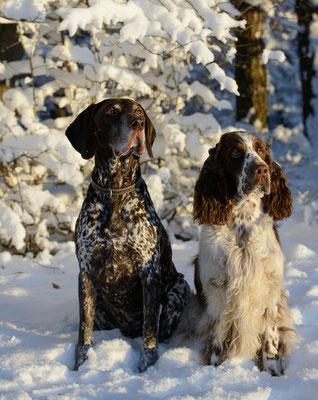 Paul & Baxti (Baxter)