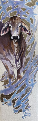 Brahman cow 35 x 11 cm watercolours and silver leaf on paper SOLD