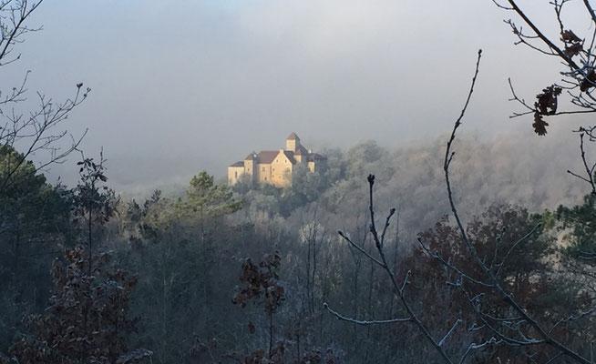 Het berijpte kasteel vroeg in de ochtend