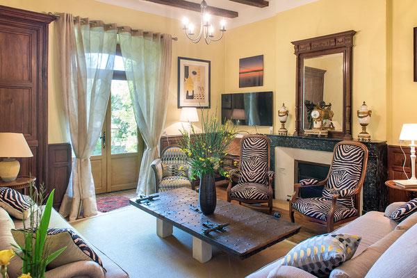 Domaine de Viel Castel, salon cosy