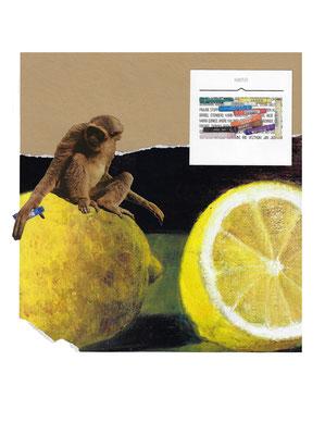 Auf die Zitrone gebracht