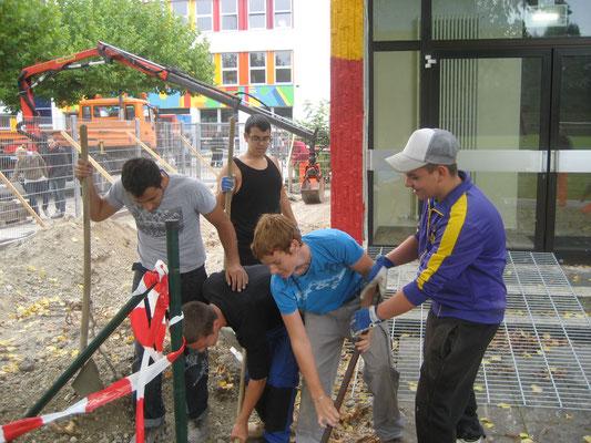 letzte Bauphase: der Zaun wird wieder mit Schülern erbaut ... bald kann es losgehen!
