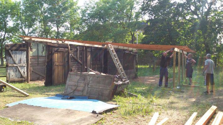 Das Dach für den Schuppen bauen.
