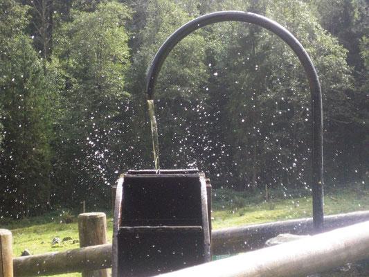 Eine Erfrischung am Brunnen ist immer willkommen