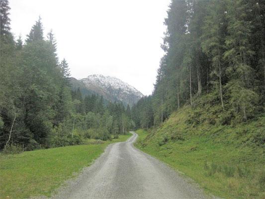 Der Wanderweg zur Klooalm in Kirchberg/Tirol ist ein gemütlicher Spaziergang