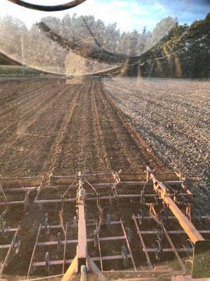 Feldbearbeitung mit Kulturegge um das Feld eben und die Brocken vom Pflügen klein zu bekommen