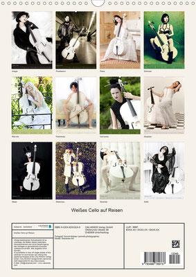 Ravienne Art Model - Kalender Weißes Cello auf Reisen